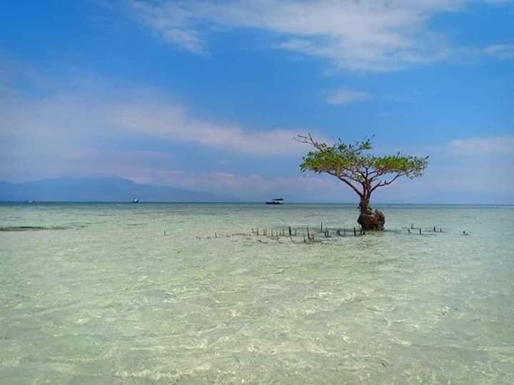 Happy Island Adventure